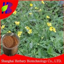 Natural ranunculus ternatus thunb extract