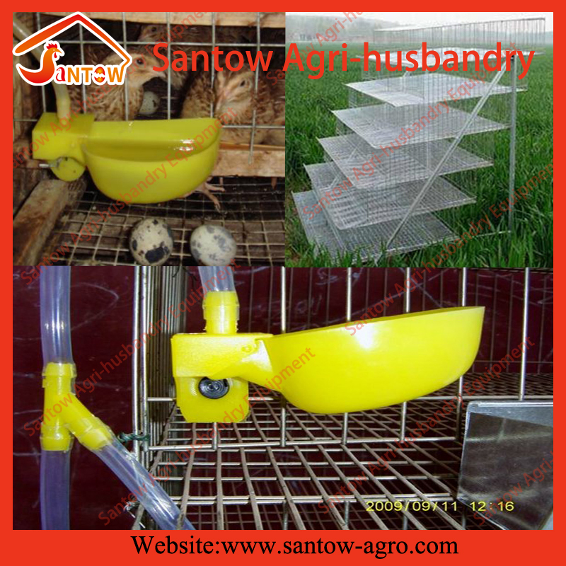 layer quail cages for sale