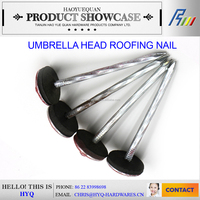 high quality Umbrella Head Roofing Nail (Factory) made in china