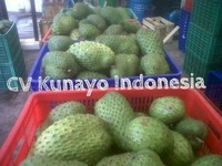HIGH QUALITY SOURSOP FRUIT