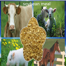 Soybean meal Supplement calcium for poultry