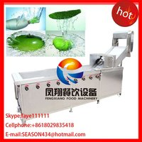 WA-2000 Large Bubble type Vegetable strawberry washing machine