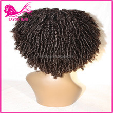 Cheap Aliexpress Products Brazilian Hair Wholesale Afro Kinky Human Hair Wigs for Sale