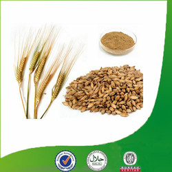 2015 New Batch Good Water Solubility Malt Extract with Free Sample