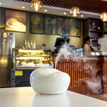 Ultrasonic Fragrance Nebulizers electric aroma diffuser