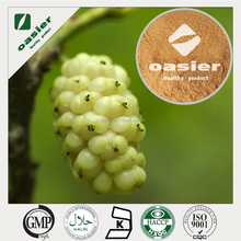 sale high quality mulberry leaves powder/ 10:1 ,1% dried mulberry leaves p.e/white mulberry leaves powder