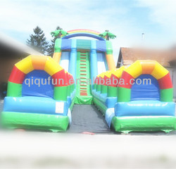 The Largest Dual Lane Slide Wuth Safety Ended Pool