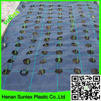Factory supply 2015 black woven geotextile garden mat pp woven ground cover /grass control plastic/ weed mat
