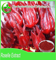 Top quality natural roselle tea extract/roselle red powder 10:1