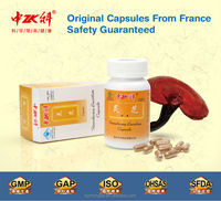Health Food supplement GMP Manufacturer GMP Ganoderma Reishi Extract