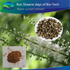 13 Years Supplier 5:1 Natural Powdered Black Cohosh Extract