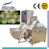 automatic green/small/spring onion peeler cutter,onion peeling/top and tail cutting machine,onion processor/processing machine