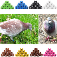 Top Sale Best Price 100pcs Multi-color Plastic Fowl Leg Bands Bird Parrot Chicks Poultry Leg Clip Rings 10.5mm 1-100 Numbered