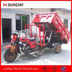 Shineray 150cc 200cc 250cc 300cc Water Cooling Heavy Loading Tuk Tuk Tricycle Motorcycle