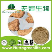 Factory supply Sanchi Extract/Panax Notoginseng Saponins powder/Radix Notoginseng Extract Notoginsenosides 80% HPLC