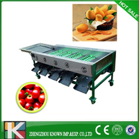 apple potato orange Round fruit and vegetable sorting/grading machine/packing fruit sorter machine