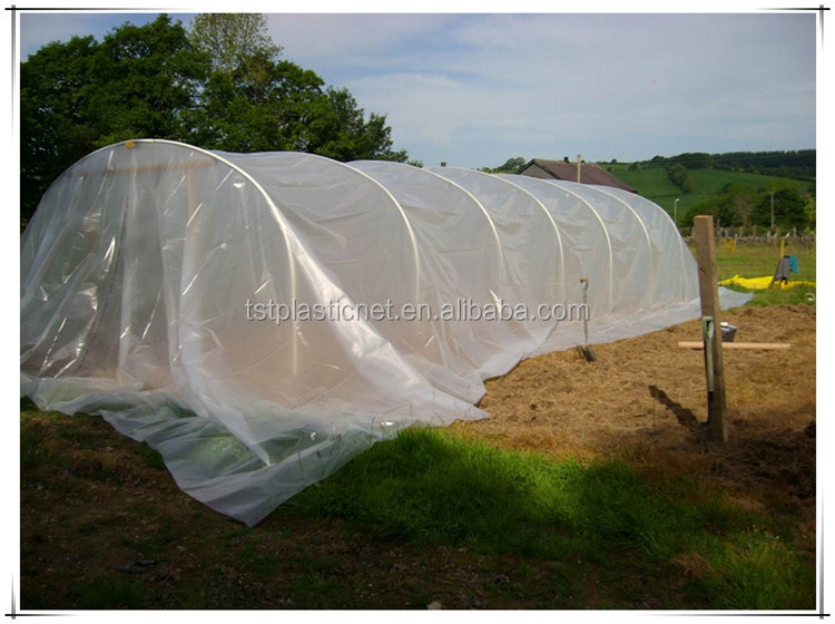 6 Mil White Polyethylene Plastic Sheeting Buy 6 Mil