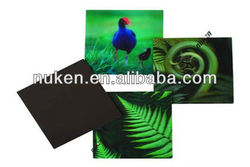 2015 Blank Acrylic Fridge Magnet for 3D Souvenier