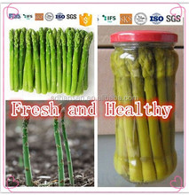 best selling canned green asparagus, health canned food ,fruits and vegetables. market price hot sale products,