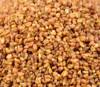 organic buckwheat wheat exporting countries