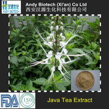 Organic Java Tea Extract 4:1