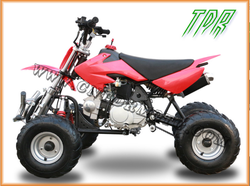 110cc TDR new product deformation variant of dirt bike and ATV