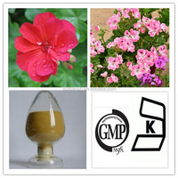 Pelargonium sidoides extract powder geranium extract 10:1 20:1
