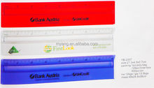 Promotional Acrylic Custom Logo Printed 20cm Ruler with Magnifier