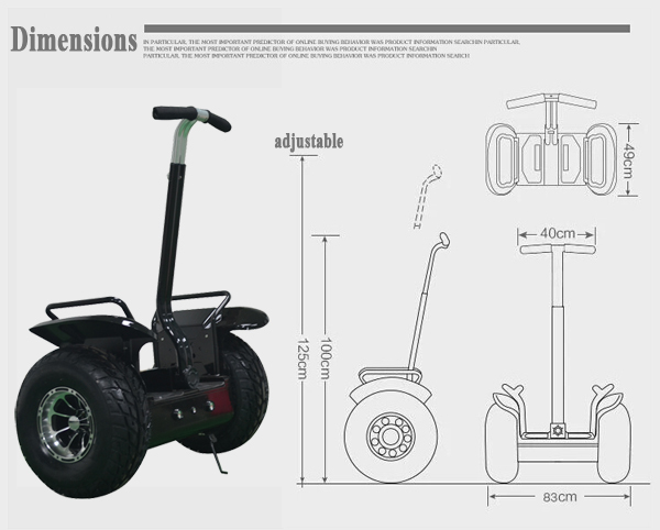 Electric chariot scooter / Mobility scooter self balancing electric scooter