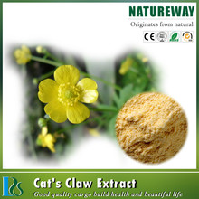 ranunculus ternatus thunb extract Cat's Claw Extract