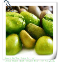 Herb origin green coffee bean extract chlorogenic acids