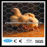 Hot sale chicken wire net 3/4 inches