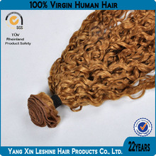 New Arrival Grade 5A 100% Virgin Human Hair No shed No Tangle Jerry Curl Virgin Hair Wet And Wavy