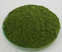 Moringa leaves powder, Moringa oleifera leaves powder, moringa powder, drumstick leaves powder