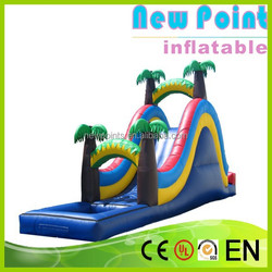 New Point inflatable water slides for summer,outdoor toys cheap inflatable slides,inflatable water slides
