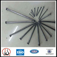 2.5 inch common iron wire nails