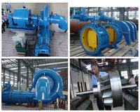 Water Turbine/Power Plant/Generator/Turbina/EPC project