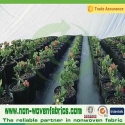 POLYPROPYLENE SPUNBOND greenhouse cover