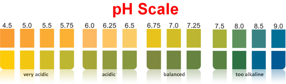 how to lower vaginal pH? at Ask Moreless: pH Balance