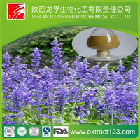 Manufacturer sppply chia seed p.e. chia seed plant extract