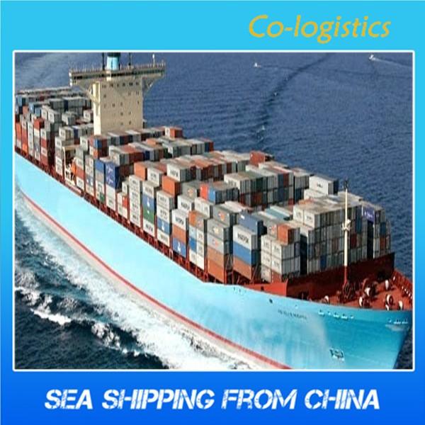 Shipping broker business