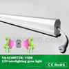 150W led supplemental lamp for strawberry nurturing replace incandescent light