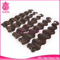 express remy unprocessed virgin malaysian hair chocolate 100% human hair extension