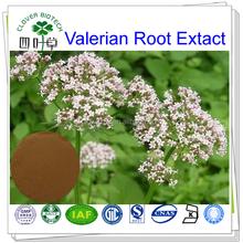 0.3% 0.5% 0.8% Valerian acid natural Valerian root extract powder