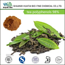 plant extract manufacturer water soluble green tea extract tea polyphenol UV 98% powder