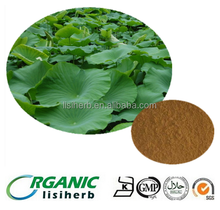 Weight loss product benefits 100% Lotus Leaf extract / Nuciferine powder