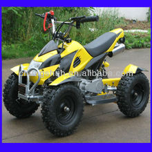 49CC buggy with 6 inches tyre