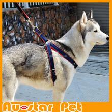 Wholesale Size M Dog Led