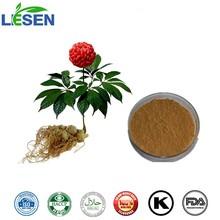 High quality natural Radix Notoginseng Root P.E.