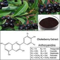 Chokeberry Extract for Beverage and Healthcare Food